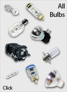 All Bulbs